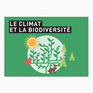 Guide in French for all on forests and global warming