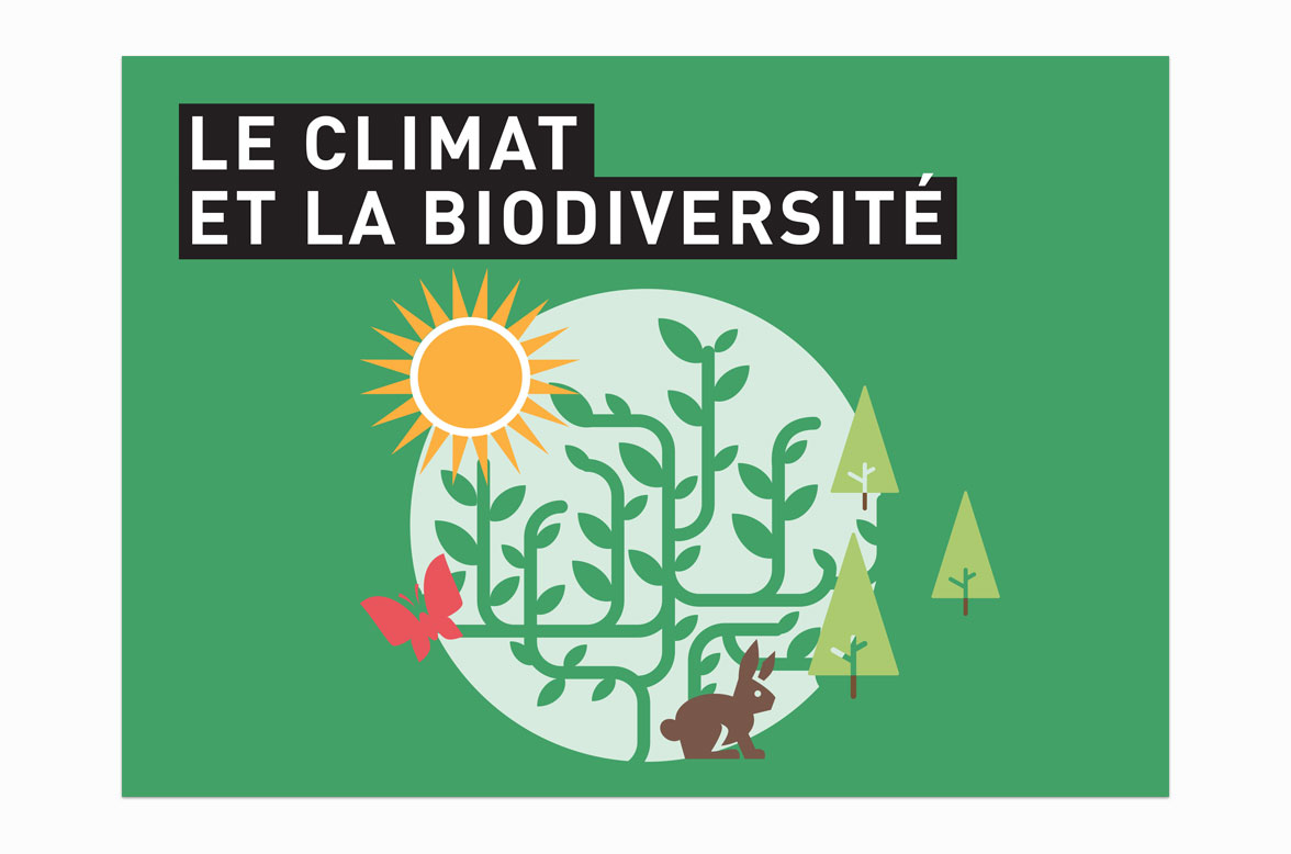 Cover page of guide in French for all® on the subjetct of forests and global warming